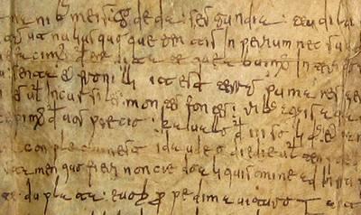 Fig. 8 Escritura rudimentaria. catedral de Lugo, Colección de Documentos Privados.