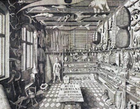 Ole Worm, Musei Wormiani Historia, 1655